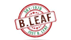 FAW BLeaf Logo